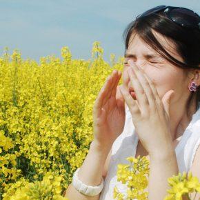 bahar alerjisi nedir