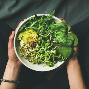vegan-beslenme