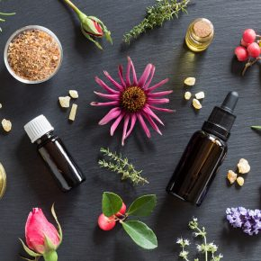 aromaterapi nedir, fitoterapi nedir